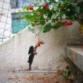 The little girl and the little Apple tree  #oakoak #streetart #urbanart #apple #appletree #pomme #red  #small #little #girl #art #stairs