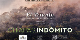 """Reserva de la Biósfera El Triunfo anuncia exposición fotográfica """"Chiapas Indómito"""""""
