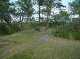 Chemin vers l'étang
