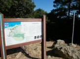 Forêt de Piana