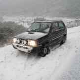 La panda sous la tempête de neige.