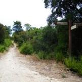 Le départ du sentier