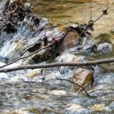 Premier passage de ruisseau