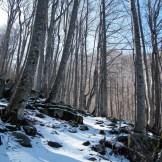 Le chemin vers le capitedu est très enneigé...