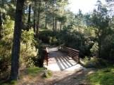 Un petit pont de bois après le terrain de foot