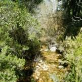 De retour au terrain de foot, l'eau qui passe sous les petits ponts de bois