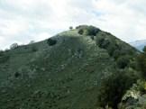 Les arbres s'arrêtent à la crête de la colline, bizarre...
