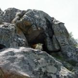 Les rochers au sommet