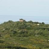 Les ruines de Capigliolu