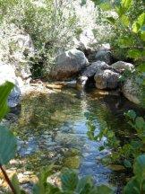 Vasque dans le Prunelli
