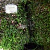 Bucolique fontaine