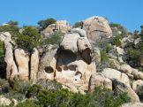Des rochers pleins de tafoni