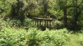 La cabane pour observer la ruche