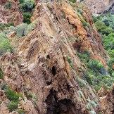 Un nid de balbuzard dans la réserve de Scandola