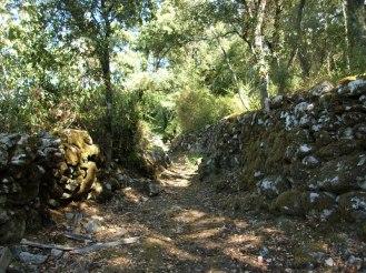 Au milieu des murets de pierres