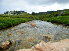 On traverse le ruisseau