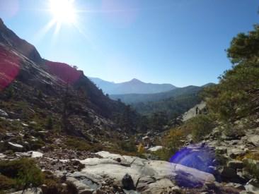 Dans la vallée du Golo