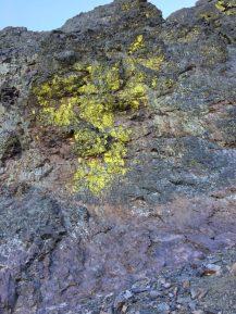 La roche est tâchée de jaune par endroit