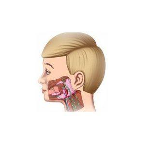 oreion-parotidita-epidemica