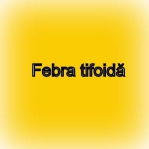 febra-tifoida