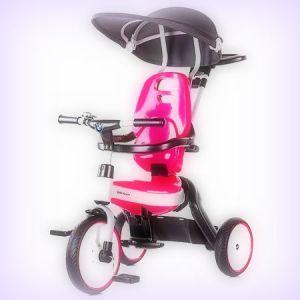 cea-mai-buna-tricicleta-copii