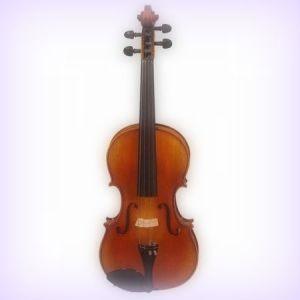 cea-mai-buna-vioara
