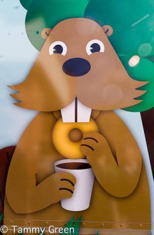 Beavers Doughnut Holes