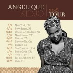 Catch Angélique Kidjo Performance // Tour 2015