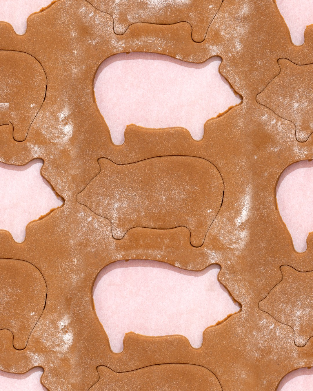 Marranitos Puerquitos Soft Mexican Gingerbread Pig Shaped Cookies