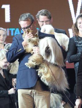 Osaomistaminen on erinomainen mahdollisuus myös koirissa