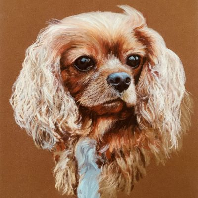 Ruby - Pastel on paper - 30x40cm - by Phil Reed