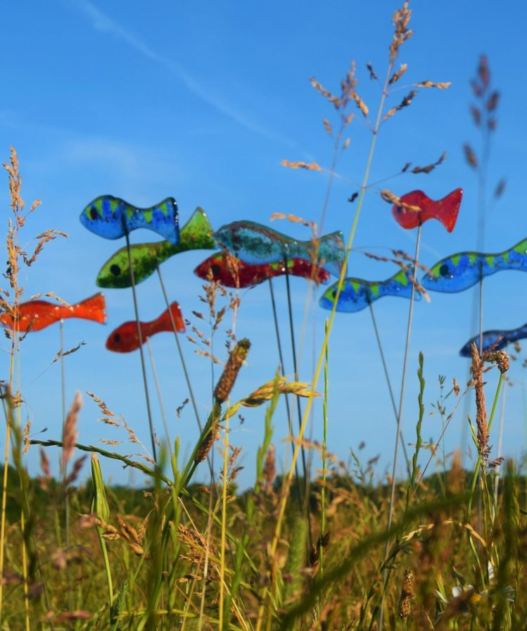 A colourful shoal of fish - Fused glass