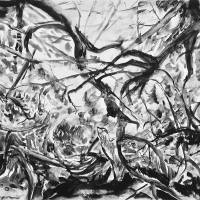 Untitled (Woodland) - Gouache on paper - 40 x 60 cms - by Elsie Green
