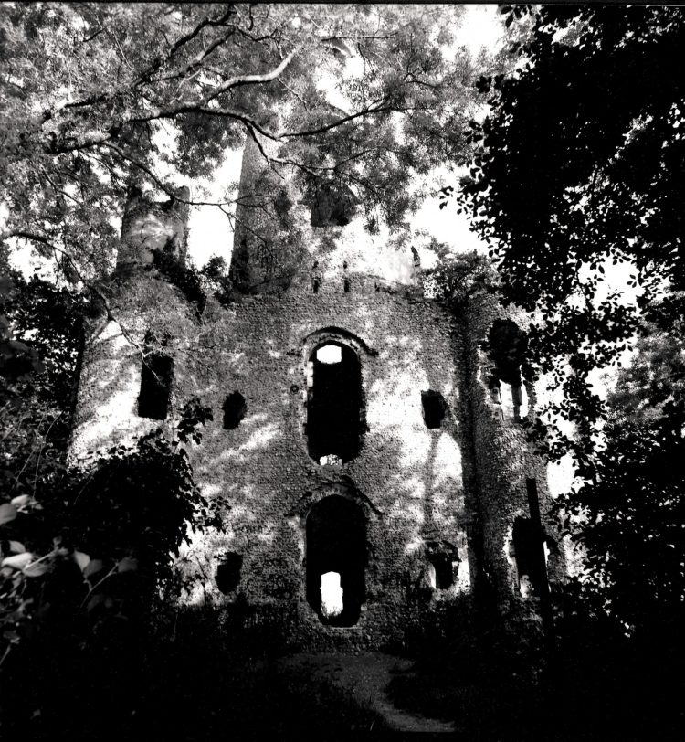 Racton Monument among the Trees - gelatin-silver print