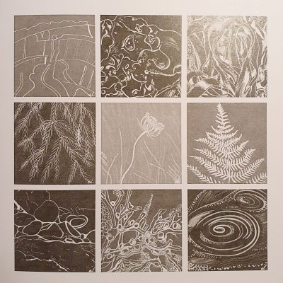 Patterns from Nature - Giclee Print - Various size - by Andrea Lawson