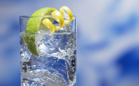 Gordon's Gin and Tonic with a Twist of Lime
