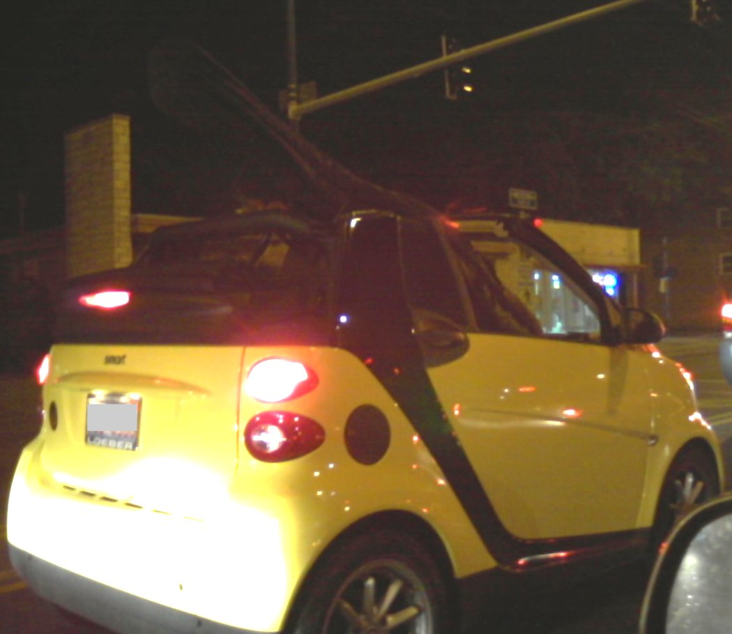 Smart Car with Upright Bass