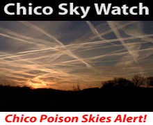 Chico Sky Watch