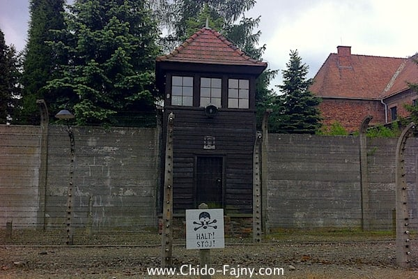 The Day I Went to Auschwitz | a Sad but Enriching Experience