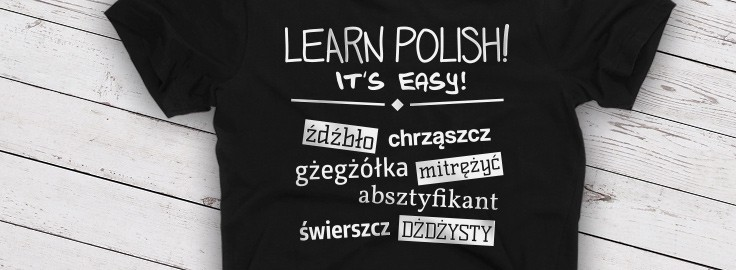 Learning Polish with David