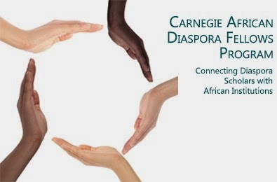 African Diaspora Fellowship Initiative kicks off