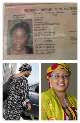 Ayo Fayose's smear against Aisha Buhari and imperative of investigative journalism