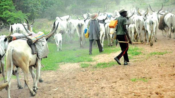 Pastoralist-farmers conflicts in Nigeria and the search for peaceful resolution