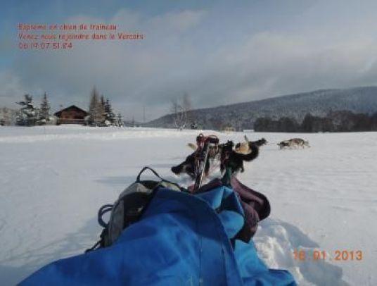 Bapteme chiens de traineau Vercors