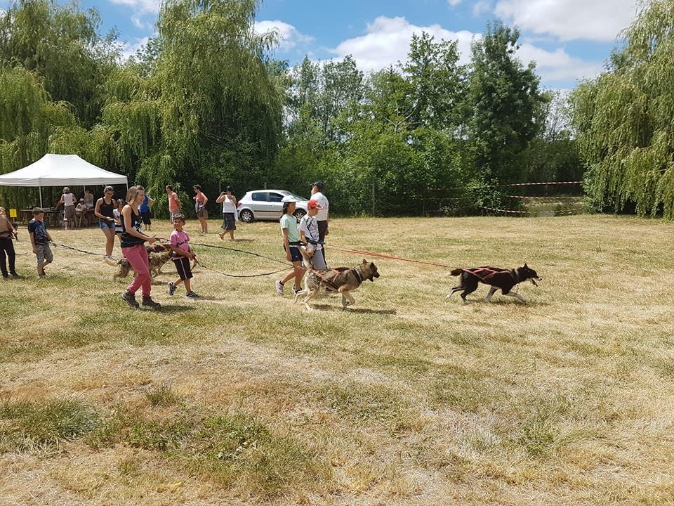Cani rando chien de traineau avec Mush and Rando