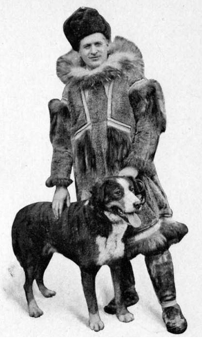 Le Husky de Sibérie ou husky sibérien