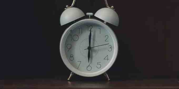 Utiliser une alarme pour apprendre votre chiot la propreté.