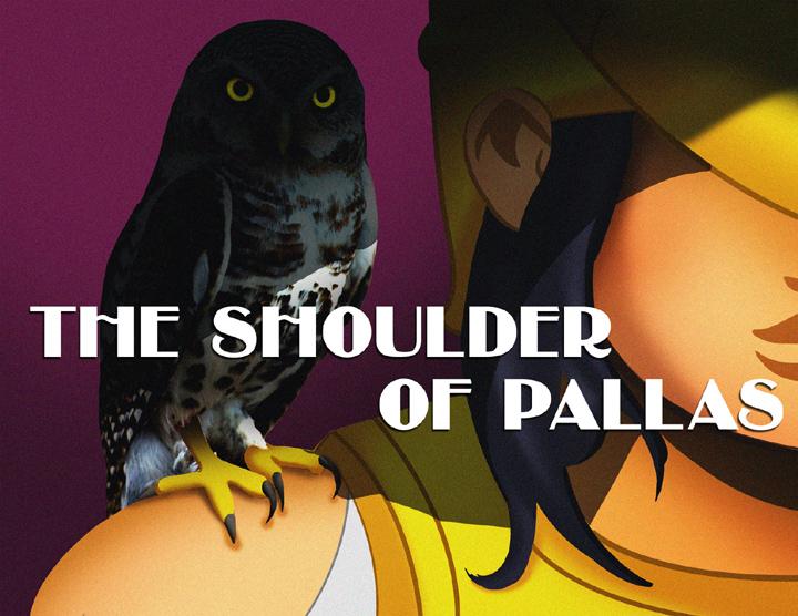 The shoulder of pallas