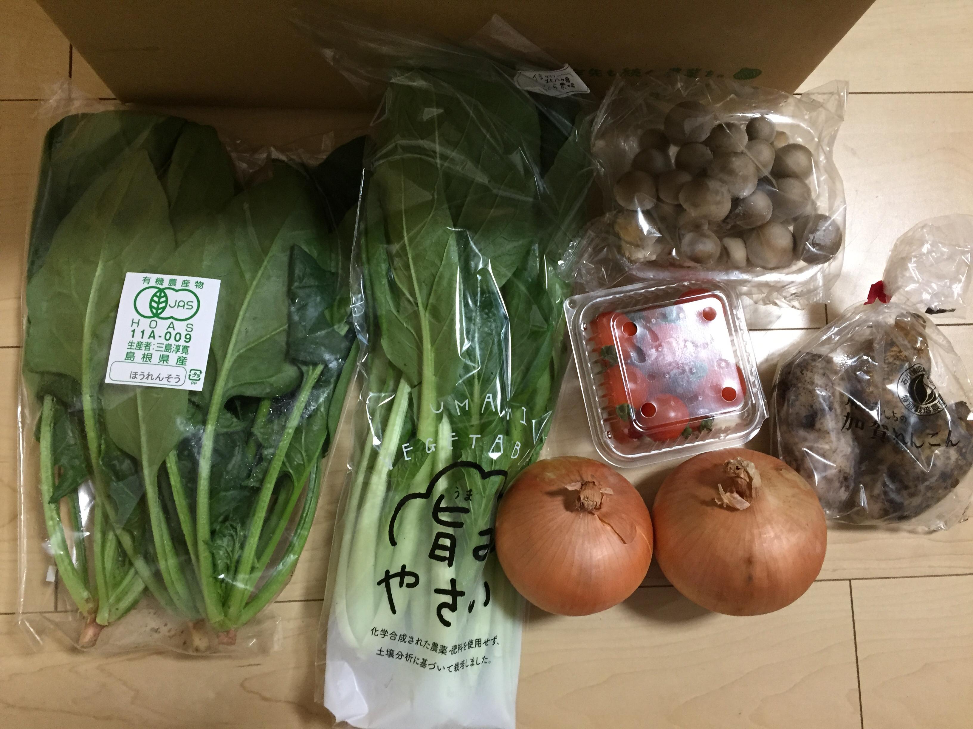 野菜宅配の坂ノ途中はお試しセット980円&送料無料!実際に注文して料理してみた!