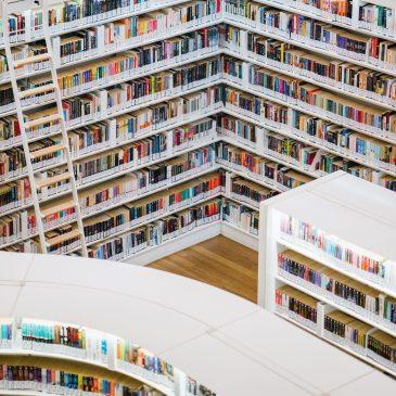 Librry Shelves